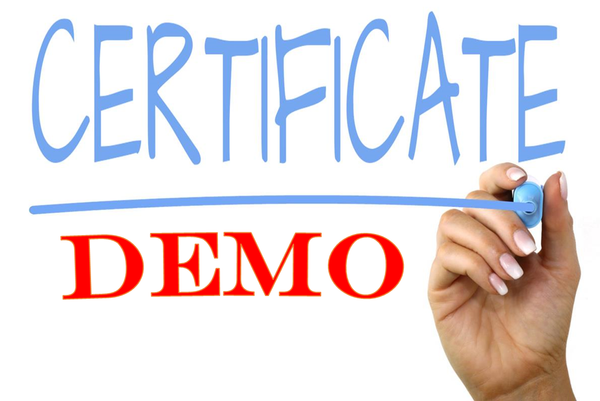 Demo certificates in BPM 12c domain